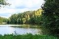 Novodvorský rybník u Hvězdova 07.jpg