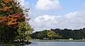 Nowa Huta Lake,anglers,Nowa Huta,Kraków,Poland.jpg