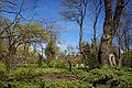 Odesa Botanical Garden 02.JPG