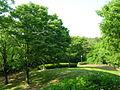 Oike-Park07.jpg