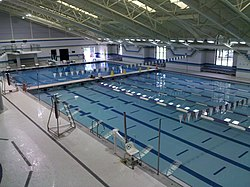 meaning of natatorium