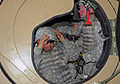 Oregon Army National Guard Military Police train for mobilization DVIDS457448.jpg