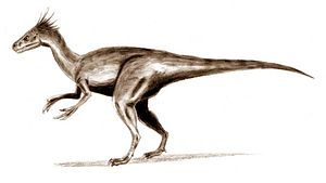 Un ornitholeste