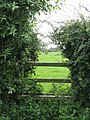 Overgrown stile - geograph.org.uk - 892679.jpg