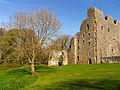 Oxwich Castle 4.jpg