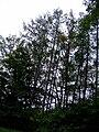 Přírodní park Baba735.jpg