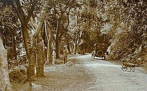 Image:PR-123 Ponce-Adjuntas Rd circa 1920