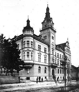 Bukovina Germans - Image: Palatul Administrativ din Suceava 19