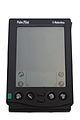 Palm-IMG 7020.jpg