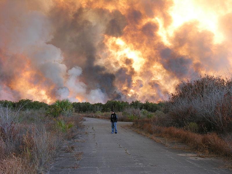 File:Palm Bay Fire.jpg