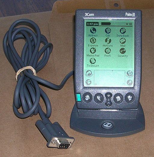 Palm III 24