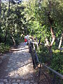 Parc Güell, May 2013 - 31.jpg