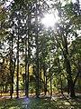 Parcul Central (3041134190).jpg