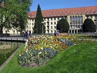 University of Freiburg Faculty of Medicine