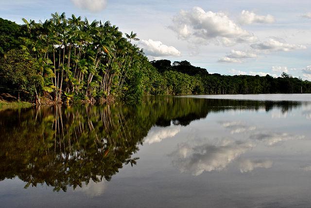 Linhares and Sooretama reserves
