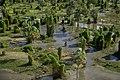 Parque Nacional Río Pilcomayo.jpg