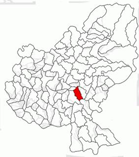Păsăreni Commune in Mureș, Romania