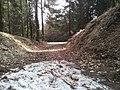 Pieszyce, Poland - panoramio.jpg