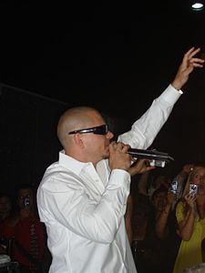Pitbullrapper.jpg
