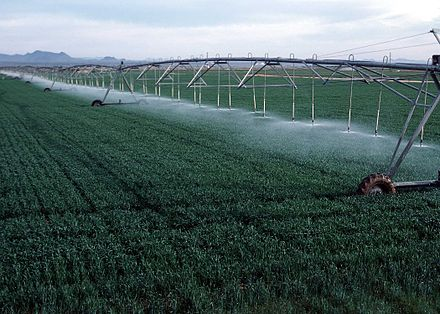A center pivot irrigation system PivotWithDrops.JPG