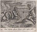 Plate 130- Scylla and Glaucus (Deus marinus effectus Glaucus Scyllae nuptias ambit), from Ovid's 'Metamorphoses' MET DP866535.jpg