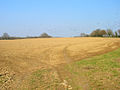 Ploughed Field near Highlands Farm - geograph.org.uk - 383745.jpg