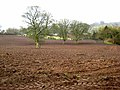 Ploughed field off the Hotchberry Road - geograph.org.uk - 759334.jpg
