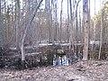 Pludi druvciema 2011 - panoramio (27).jpg