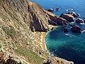 Point Reyes Headlands Colony (39114201-44ce-4c5f-b2fb-7f8de75f5f07).JPG