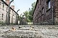 Poland-2423531 1920.jpg