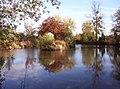 Pond at Lower Farm, Preston Wynne - geograph.org.uk - 1534379.jpg
