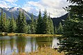 Pond in Bugaboo Mountains, British Columbia.jpg