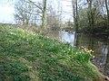 Pond near the Daffodil Way at Timber Hill Farm - geograph.org.uk - 768416.jpg