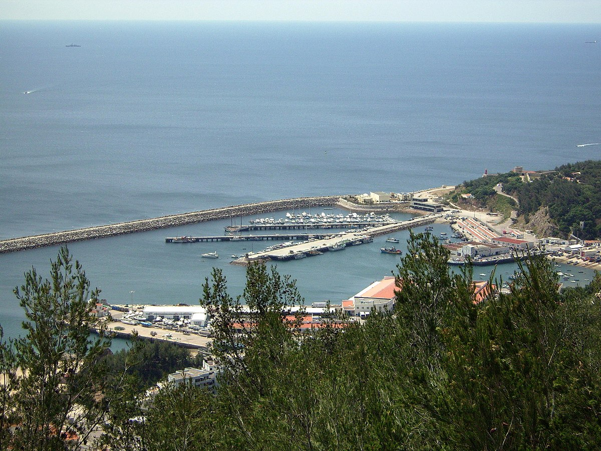 Amiga do porto portugal 3