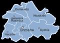 Powiat brzozowski.png