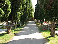 Pozsonyeperjes temető 3.JPG