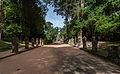 Preah Khan, Angkor, Camboya, 2013-08-17, DD 38.JPG