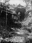 Prisoner's Glen, Hydro Majestic, Medlow (2430713934).jpg