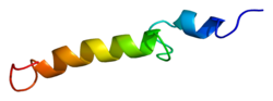 Protein PTH PDB 1bwx.png