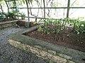 Putrajaya's Botanical Garden 18.jpg
