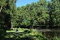 Réserve naturelle régionale des étangs de Bonnelles le 26 mai 2017 - 13.jpg