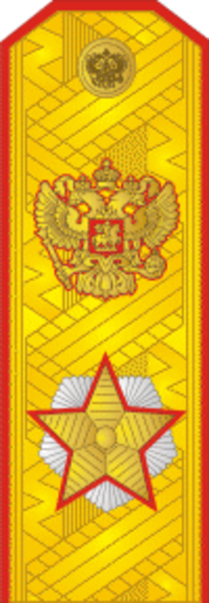 Army ranks and insignia of the Russian Federation - Image: RAF F10Marsh RF 2010parad
