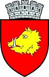 Coat of arms of Roman