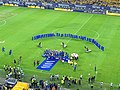 RO B National Arena Petrolul winning Cup of Romania 2013.jpg