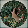 Rabbit amid Ferns and Flowering Plants (W.J.Webbe).jpg