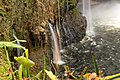 Rainbow Falls, Hilo - panoramio (7).jpg