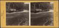 Rapids at Ticonderoga, by Stoddard, Seneca Ray, 1844-1917 , 1844-1917.png