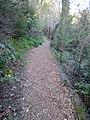 Reed Canyon, Portland, Oregon (2013) - 13.JPG