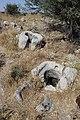 Relics seens at Kh. Zanoah.jpg