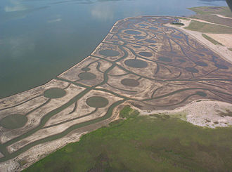 Lavaca Bay - Additional salt marsh added to the bay.